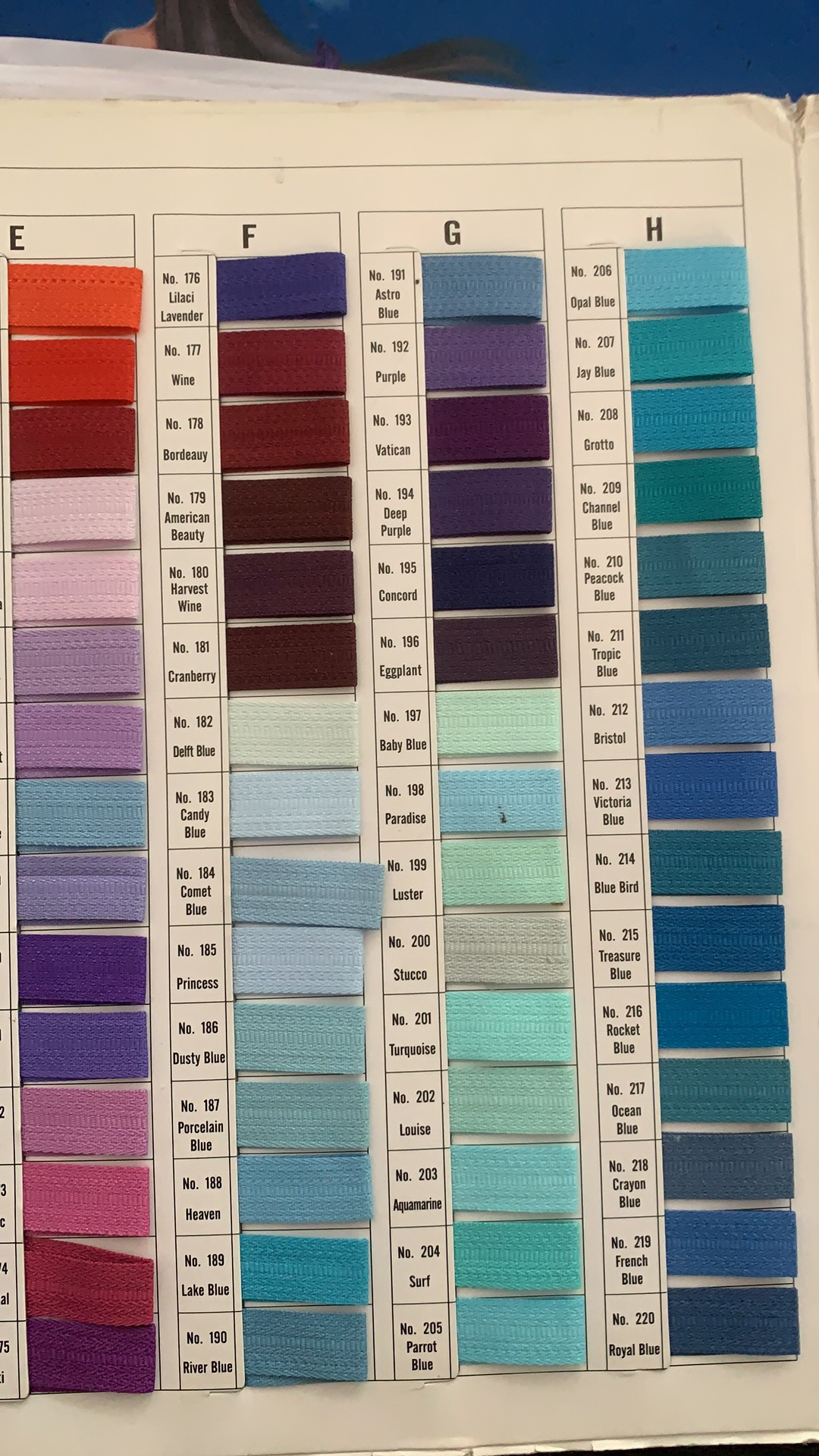 The Color Swatch For Zipper On The Laundry Mesh Bag
